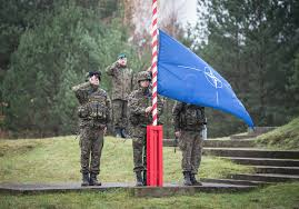 Image result for nato europe