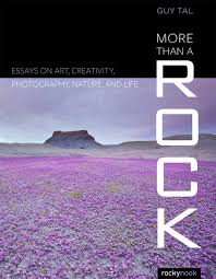 more than a rock essays on art landscape and photography more than a rock essays on art landscape and photography amazon co uk guy tal 9781937538828 books