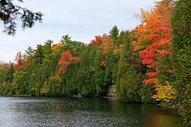 Image result for Crawford Lake Conservation