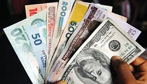 Image result for photos of naira notes