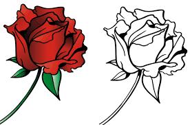 Раскраски Цвветы