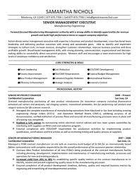 senior management executive  manufacturing engineering  resume    senior management executive  manufacturing engineering  resume sample