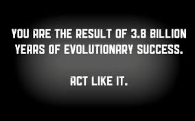 "Tag Archive for ""Evolution"" 