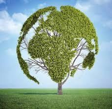 Resultado de imagem para meio ambiente e olimpiadas