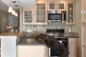 condo kitchen design ideas pictures remodel
