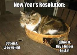 Image result for new year 2016 animals