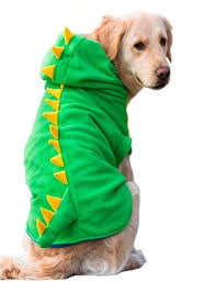 <b>Dog Clothes Dog</b> Jumper Winter Sweater <b>Pet</b> Transforming ...