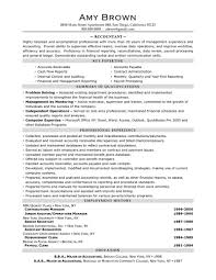 Images of Accounting Resume Summary - career resume and curriculum ...