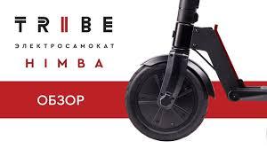 Обзор <b>электросамоката TRIBE</b> Himba - YouTube