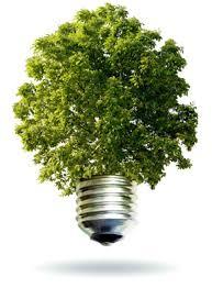 """Résultat de recherche d'images pour """"image ecologie"""""""