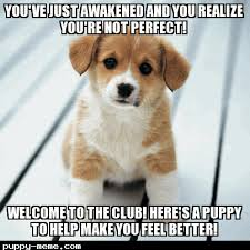 You've just been awakened via Relatably.com