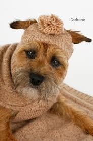 Одежда для собак   Записи в рубрике Одежда для собак ...