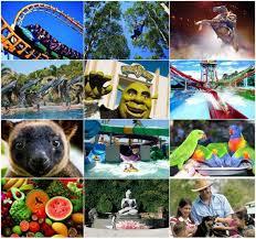 cheap theme park transfers gold coast