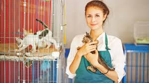 best part time jobs for high school students young w working at animal shelter cats