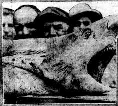 1916 <b>New</b> Jersey Shore <b>shark</b> attacks inspired Jaws and changed ...