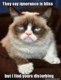 Tards! on Pinterest | Grumpy Cat, Grumpy Cat Meme and Meme via Relatably.com