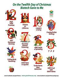 Dr Rex Equality News Information Twelve days of Christmas ...