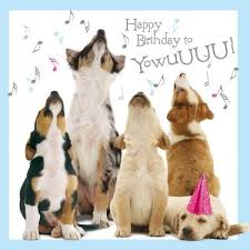 Image result for happy birthday dogs