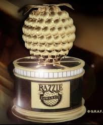 Razzie Award, Raspberry