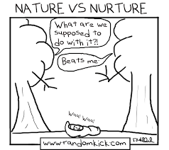 nature and nurture essay an essay on nature and nurture