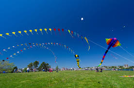 kite festival sojourns festive tours kite festival tours