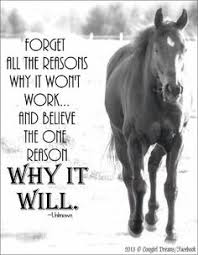 Horses on Pinterest | Horse Quotes, Equestrian and Funny Horses