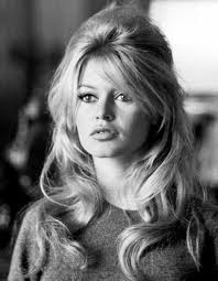 Brigitte Bardot earned a 3 million dollar salary, leaving the net worth at 45 million in 2017