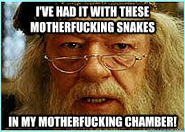 Angry Dumbledore memes | quickmeme via Relatably.com