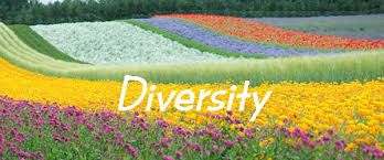 Image result for unity and diversity of the Church