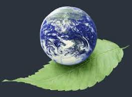 Image result for تصویر مرتبط بامدیریت محیط زیست