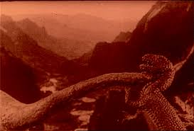 Image result for images of 1925 the lost world
