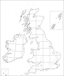 Crepis foetida | Online Atlas of the British and Irish Flora