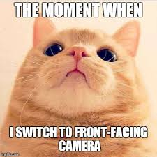 Image tagged in awkward selfie cat - Imgflip via Relatably.com