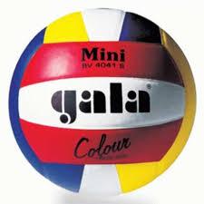 Мячи <b>волейбольные GALA</b>