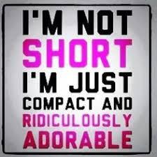 Short girls on Pinterest | Short Girl Problems, Short People ... via Relatably.com