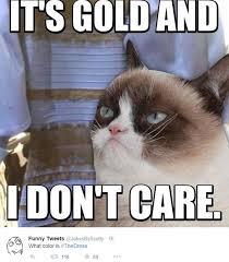 Kim Kardashian, Grumpy Cat get the meme treatment as Twitter users ... via Relatably.com