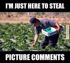 Picture Comment Collection on Pinterest | Comment Memes, Comment ... via Relatably.com