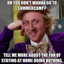 Oh you Don't Wanna go to Summercamp? Tell me more about the fun of ... via Relatably.com