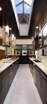 contemporary kitchen helper honey x glass ceiling in a galley kitchen