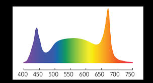 Horticulture Lighting Applications | SAMSUNG <b>LED</b> | Samsung <b>LED</b> ...