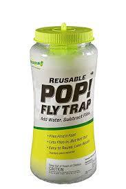 Amazon.com : RESCUE Outdoor Non-Toxic Reusable POP! <b>Fly Trap</b> ...