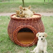Image result for pet basket