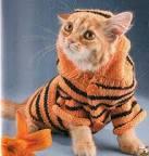 Вяжем одежду для кота