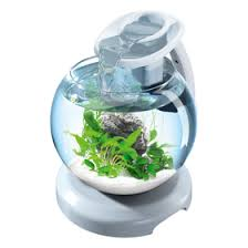 <b>Аквариум Tetra Cascade Globe</b> Duo Waterfall, 6,8 л, круглый с LED ...