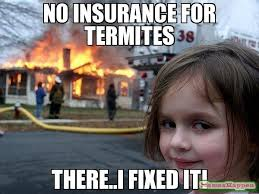 No insurance for termites there..i fixed it! meme - Disaster Girl ... via Relatably.com