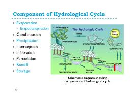 water cycle and water budgethydrological cycle