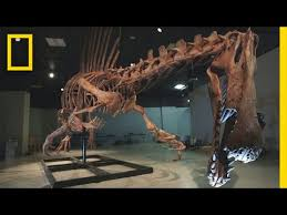 Bigger Than <b>T. rex</b>: Spinosaurus | National Geographic - YouTube