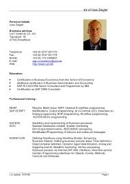 example of cv resumes template example of cv resumes