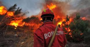 Alcoutim e Tavira em risco máximo de incêndio