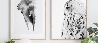 <b>Animal Posters</b> - Buy Insect and <b>Animal Prints</b> - Posterstore.ie